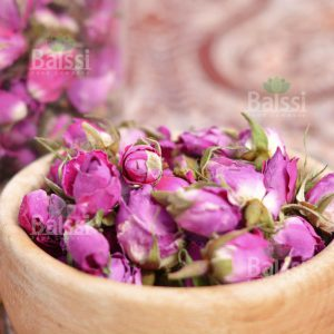گل سرخ محمدی