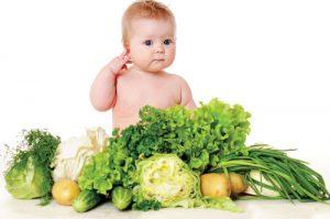 گیاهان مفید برای کئدک