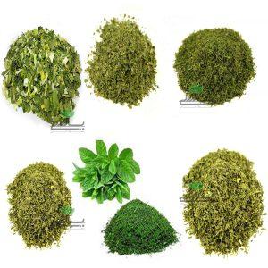 صادرات سبزی خشک بالسی